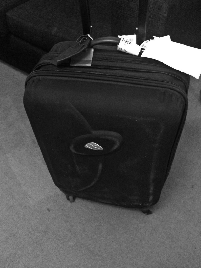 The Traveling Luggage