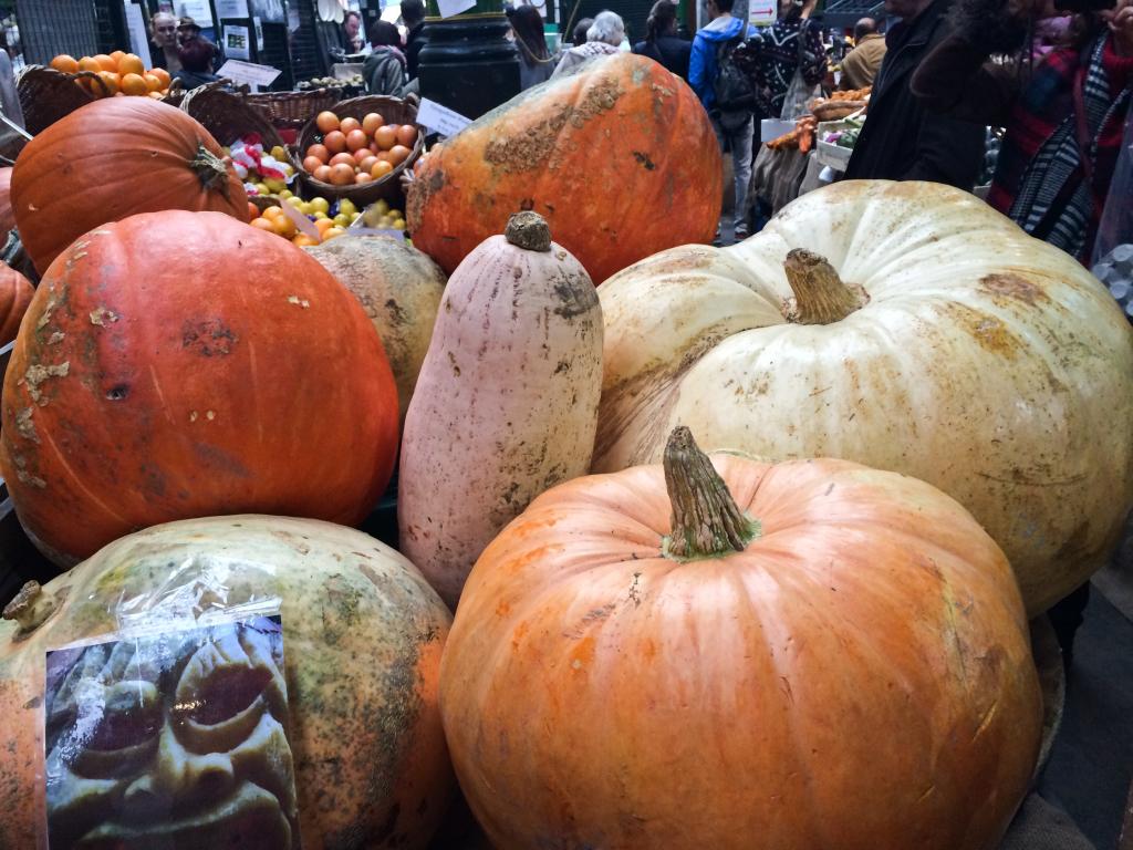 an urban pumpkin patch