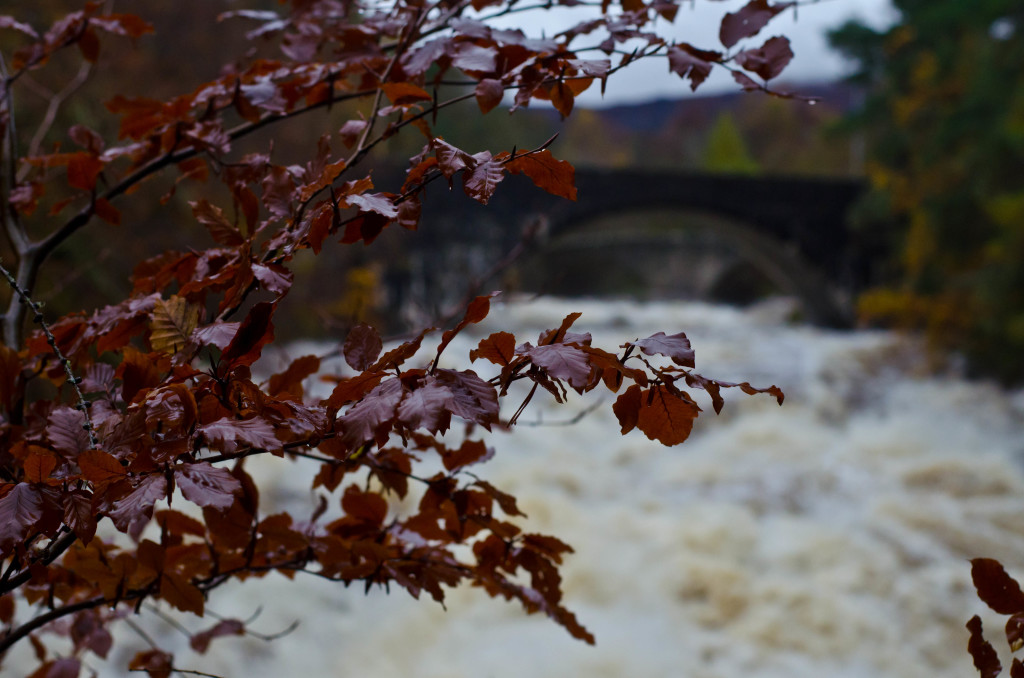 Invermoriston | Inverness